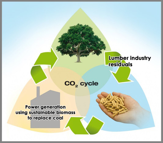 Renewable Energy - Mission Wood Pellet Inc. our 'mission' is cleaner ...